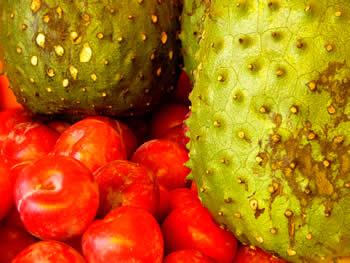 Frutas Del Ecuador -VisitaEcuador - El Portal Oficializado ...